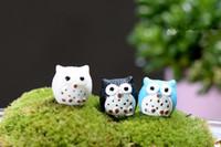 ingrosso mini figurine-4 colori uccelli artificiali gufo fairy garden miniature mini gnomi moss terrari in resina artigianato figurine per la decorazione del giardino