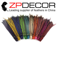 Wholesale Dyed Feathers Wholesale - ZPDECOR 100pcs lot 30-35cm(12-14inch)TOP Quality Directly Dyed Multi Color Hen Ringneck Pheasant Tail Wholesale Feathers For Carnival Decor