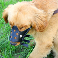 Wholesale bite dog collar online - Pet Mouth Cover Skin Bite Proof Dog Cage Case Durable Comfortable Traction Belt Mask Convenient And Quick Easy To Use Leashes zt J