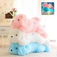 Wholesale Night Light Pillows - kawaii 45CM Night Light LED Lovely Dog Plush Toys Animal Pillow Bolster for Kids and Friends