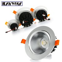 Vente en gros- RAYWAY Dimmable 5W-25W LED Plafond Down AC85-265V Encastré Aluminium moulé sous pression COB Downlight avec Light guide column Lamp