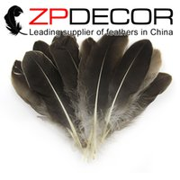 Wholesale Natural Feather Grizzly - ZPDECOR Feather 100pcs lot Hand Select Premuim Quality Natural Grizzly Goose Satinettes Loose Feathers Wholesale For Wedding Decor