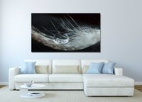 Wholesale print frame digital photos - Animal White Feather Photo Print Canvas Painting Home Wall Art Picture For Living Room Unique Gift