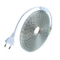 mini bahçe aydınlatması toptan satış-Su geçirmez SMD5050 led bant AC220V esnek led şerit 60 leds / Metre AB fiş ile Açık bahçe aydınlatma