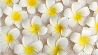 Wholesale Hawaiian Flowers For Hair - Wholesale 100Pcs lot 7cm Plumeria Hawaiian Foam Flower For Wedding Party Hair Clip Flower bouquet Decoration