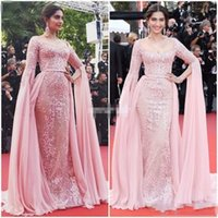 Sonam Kapoor Elie Saab Overskirt Abendkleider 2017 Rosa Appliqued Formal Party Kleider Reißverschluss Zurück Red Carpet Celebrity Dress Prom Kleider