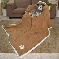 Wholesale Luxury Blankets Free Shipping - Wholesale- Free shipping Luxury Large Super Soft Pet Blankets Suede Fleece Blanket Pure Color For Large Dog Cat Bath Towel Pet Supplies