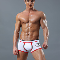Wholesale Mens Sexy Underwear Penis - 4 pcs Brand Sexy Men Underwear Boxer Shorts Trunks modal Cotton Mens Underwear Boxers Penis Pouch WJ U Convex Man Underpants Waist NS007