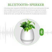 Wholesale Free Computer Music - TOKQI Bluetoth Smart Music Flowerpots Plant Piano Music Playing Wireless Flowerpot colorful light Flower pots (whitout Plants) dhl free
