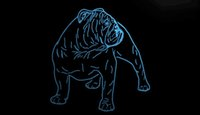 LS1779-b-Bulldog-Dog-Shop-Pet-Display-Nouveau-Neon-Light-Sign.jpg