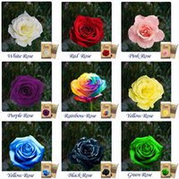 Wholesale THIS ORDER INCLUDE PACKS EACH COLOR SEEDS CHINESE ROSE SEEDS Rainbow Pink Black White Red Purple Green Blue Rose Seeds