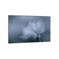 Wholesale gray canvas painting - Modern 1 PCS Gray Plant Dandelion Giclee Printing On Canvas For Living Room Cafe Home Decor Wall Art Picture Wholesale Decoration