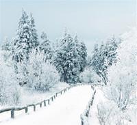 tela de fondo para la fotografía al por mayor-Invierno Nieve Escénico Sesión de fotos Fondos Tela de vinilo Blanco Carretera de campo Fotografía de Navidad Vacaciones Fotografía Telones de fondo 10x10ft
