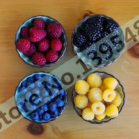yellow raspberries al por mayor-4 tipos de color 4000 PCS semillas de frambuesa (1000 azul, 1000black, 1000 rojo, 1000 amarillo) deliciosas plantas frutales