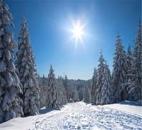 ingrosso pini blu-Sunny Blue Sky Winter Fondali per la fotografia di spessore bianco coperto di neve Pini Ski Slope Christmas Holiday Kids Photo Booth sfondo
