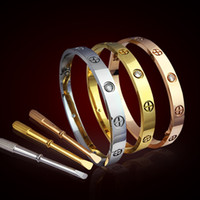 Wholesale White Gold Ring Amethyst - New style silver rose 18k gold 316L stainless steel screw bangle bracelet with screwdriver and original box screws never lose