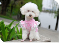 Wholesale Thin Lace Sweater - Newst pet dog clothes spring summer clothes thin CC Miss lace cuff from boats pet sweater