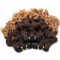 double drawn indian hair venda por atacado-Ombre Cor Funmi Cabelo 3 Bundles Indiano Virgem Cabelo Humano Duplo Traços Desenhados 8-30 polegada FDSHINE