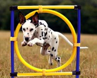 Wholesale Game Dog Collars - Pet Dogs Outdoor Games Agility Exercise Training Equipment-Jump Hoop Obedience Show Training Jump Circle for Pets