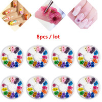 Wholesale Wholesale 3d False Nails - 8Pcs Set Wheel 12 Color Real Dry Dried Flower for 3D UV Gel Acrylic False Tips Nail Art Salon