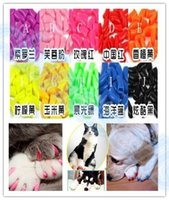 Caliente 20 unids / lote Soft Pet Dog Cats Kitten Paw Claws Control Nail Caps Cubre abrigos catlike conjuntos cat armadura clavo cap con pegamento