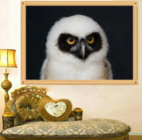 One Panel owls cross stitch - DIY Diamond Painting Cross Stitch Owl White Picture Mosaic Pictures for Living Room Diamond Embroidery Diamond Paintings U0003