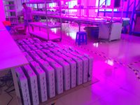 Wholesale Tests Grow - Hi-Pot Test 1000W LED Grow Light