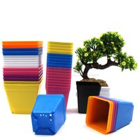 Wholesale Plant Edging - Square Mini Flowerpots Seven Colors Thickened Toughness Garden Pot Smooth Edge Plastic Planters Easy To Clean 0 2wn B