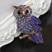 Wholesale Big Owl Scarf - Big Blue Rhinestone Owl Brooches For Wedding Bouquet Vintage Scarf Pin Buckle Broches For Women Men Gifts