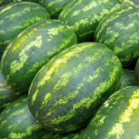 Wholesale Giant Fruit Seeds - Big Sale!30 Pcs Lot Giant Watermelon Seeds Fruit Seeds Planting Watermelon Seeds NON-GMO Edible Fruits,