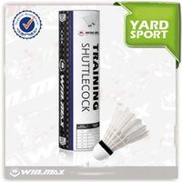 Wholesale Sport Badminton Feather Shuttlecocks - Aeroplane Cheap And Good Quality Badminton Shuttlecock Have Six Packet Nessery For Racquet Sports And ports & Outdoors