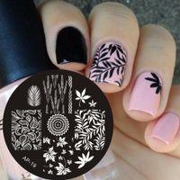 Wholesale Nail Art Disk - Wholesale- Pandox AP19 Leaves Theme Nail Art Stamp Template Image Plates Nail Stencil Disk