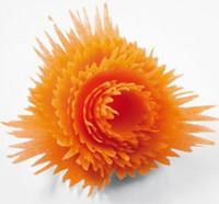 plastique transformé achat en gros de-Trancheuses en plastique Légumes Fruits Spirale Shred Processus Dispositif Cutter Trancheuse Éplucheur Cuisine Outil Type d'onde Déchiqueteuse