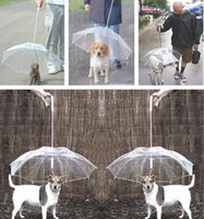 Wholesale Umbrella Canopies - new Hot pet dog protective rain umbrella fashion sunny umbrella have a tring for walk the dog J127