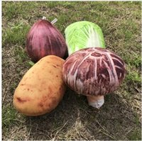 Wholesale Toy Vegetables For Baby - Vegetable Plush Toy Creative Stuffed Baby Kids Toys Cabbage Home Decoration Vegetable Toy Best Gifts for Girls Boys DHL Free Shipping