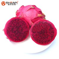 Wholesale dragon fruits resale online - Unique Red Dragon Fruit Seeds Anti aging Bonsai Plants Pitaya Fruit Trees Seeds for Home Garden
