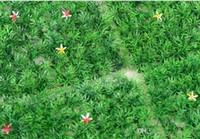 ingrosso erba di prato di plastica-25X25 CM Artificiale di plastica bosso topiaria albero Erba Prato per giardino casa decorazione di cerimonia nuziale spedizione gratuita