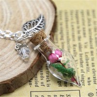 Wholesale Glass Bottle Garden - 10pcs Fuchsia Flower and Moss Glass Bottle Necklace leaf charm and crystal silver chain necklace Fairy Garden jewelry