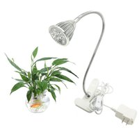 Wholesale Desk Lamp Flexible - LED Grow Lights Ingleby 5W LED Clip Desk Lamp Clamp Flexible Neck 360 Degree For Hydroponic Garden Greenhouse