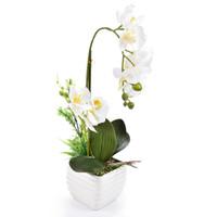 маленькие орхидеи оптовых-Шелк реальный сенсорный Home Decor искусственный Фаленопсис орхидеи цветочная композиция небольшой бонсай растения с керамической цветочный горшок