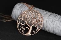 Wholesale Color Owl Necklace - 10 pcs Owl Pendant Necklace Jewelry Accessory Women Fashion 2017 Silver Rose Gold Color Chain Crystal Long Necklaces & Pendants