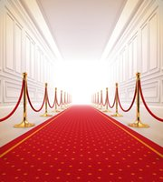 Wholesale Indoor Wallpaper - Red Carpet Wedding Backdrop Photography Bright Front Door Indoor Photographic Background Picture Shooting Props Booth Wallpaper Vinyl Cloth