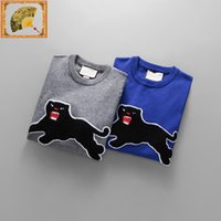 Wholesale Wool Shirts For Men - Men's sweaters t shirt high quality men sweater clothes for size m-3XL 2017 new designer style fashion Luxury clothes for free shipping