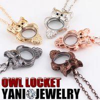 medallones búho vintage al por mayor-Vintage Owl Locket collar colgante elegante bohemio flotante Locket collar colgante para mujeres 5 colores