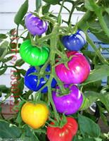 semillas de vegetales bonsai al por mayor-50 unids / bolsa de semillas de tomate arco iris, semillas raras de tomate, bonsai semillas de frutas vegetales orgánicos, planta en maceta para el jardín de su casa