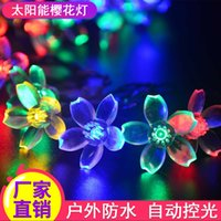Wholesale Solar lantern cluster m LED solar cherry blossom Lantern Festival decorative lights series led lanterns