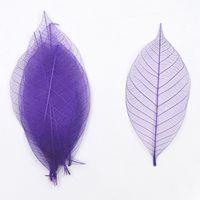 Wholesale Filler Flowers - Purple Diamond vein   Natural Magnolia vein dried flowers multi color DIY handmade glass epoxy filler material 100 Pcs Free Shipment