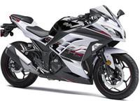 weiße kawasaki ninja plastics großhandel-3 Werbegeschenke Für Kawasaki NINJA 300 ZX300 2013-2015 ZX300R Einspritzung Moiding ABS Kunststoff Motorrad Verkleidung Kit NINJA300 13-15 Schwarz Weiß v