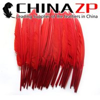 Wholesale pointer led for sale - Leading Supplier CHINAZP Crafts Factory cm inch Hand Select Dyed Multicolor Goose Primary Pointer Feather For Decoration