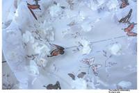 vestidos de rede macia venda por atacado-Bordado borboleta chiffon tecido de renda áfrica tecido de renda vestido de casamento suave net estilo bordado flores organza tecido de renda